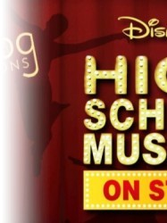 High School Musical at Chequer Mead, East Grinstead
